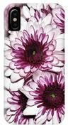 Burgundy White Crysanthemums IPhone Case