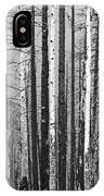 Burnt Forest IPhone Case