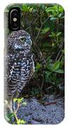 Burrowing Owls At Guard IPhone Case
