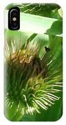 Bursting IPhone Case