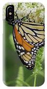 Butterfly 188 IPhone Case