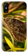 Butterfly 25 IPhone Case
