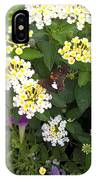 Butterfly And The Spider IPhone Case