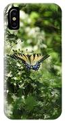 Butterfly In Muted Green Background IPhone Case