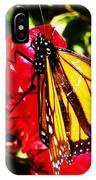 Butterfly On Bougainvillea IPhone Case