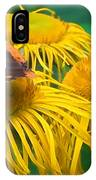 Butterfly On Chrysanthemum Flowers IPhone Case