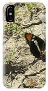 Butterfly On Cracked Ground IPhone Case