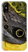 Butterfly Reflections IPhone Case