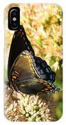 Butterfly1 IPhone Case