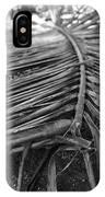 Bw Fallen Frond IPhone Case