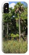 Cabbage Palms Along The Cotee River IPhone Case