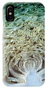 Cabbage Universe IPhone Case