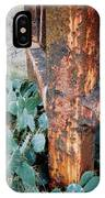 Cactus And Rust IPhone Case