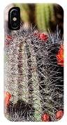 Cactus Bloom 033114f IPhone Case