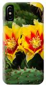 Cactus Bloom IPhone Case
