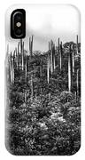 Cactus Field IPhone Case