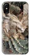 Cactus Fractals IPhone Case