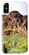 Cactus On The Mountainside IPhone Case