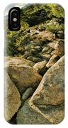 Cactus Rock IPhone Case