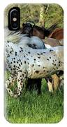 Cades Cove Horses IPhone Case