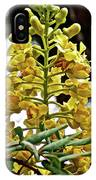 Caesalpinia Cacalaco In Huntington Desert  Gardens In San Marino-california  IPhone Case