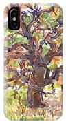 California Oak In Winter IPhone Case