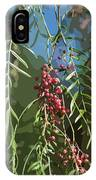California Pepper Tree Leaves Berries Abstract IPhone Case