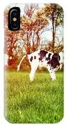 Calves In Spring Field IPhone Case