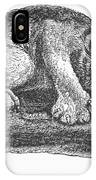 Canada Lynx, 1873 IPhone Case