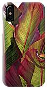 Canna Leaves 2   IPhone Case