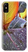 Canna Lily I  IPhone Case