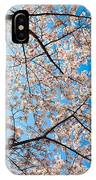 Canopy Of Cherry Blossoms IPhone Case