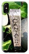 Cantaloupe IPhone Case