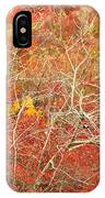 Cape Cod National Seashore Dwarf Beech Foliage IPhone Case