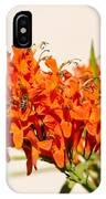Cape Honeysuckle - The Autumn Bloomer IPhone Case