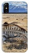 Carcass With A View IPhone Case
