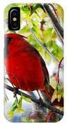 Cardinal 1 IPhone X Case