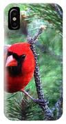 Cardinal 2 IPhone X Case
