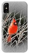 Cardinal Centered IPhone Case