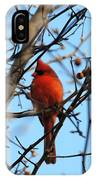 Cardinal II IPhone Case