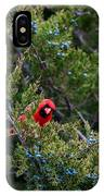 Cardinal Lunch IPhone Case