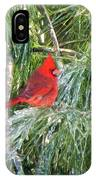 Cardinal On Ice IPhone Case