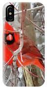 Cardinal Red IPhone Case