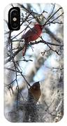 Cardinals In Mossy Tree IPhone Case