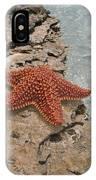 Caribbean Starfish IPhone Case