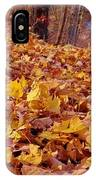 Carpet Of Fall Leaves IPhone Case
