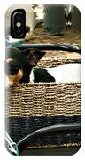 Carriage Dog IPhone Case