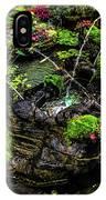 Cascades Fountains IPhone Case
