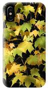 Cascading Leaves IPhone Case