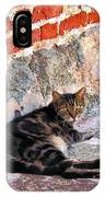 Cat Against Stone IPhone Case